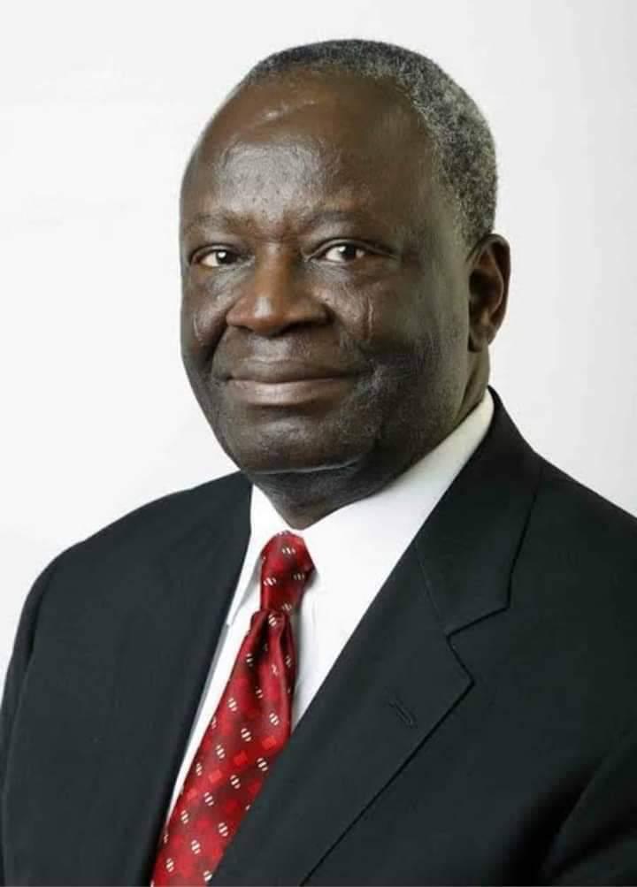 Read the CV of Prof Gambari,Buhari New Chief of Staff