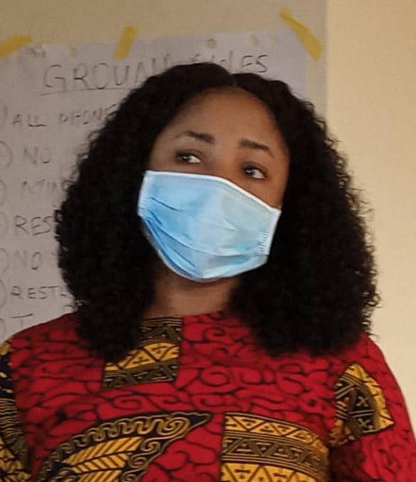 Malaria:Adamawa govt partners NMEP to distribute 2.8M treated mosquitoes nets