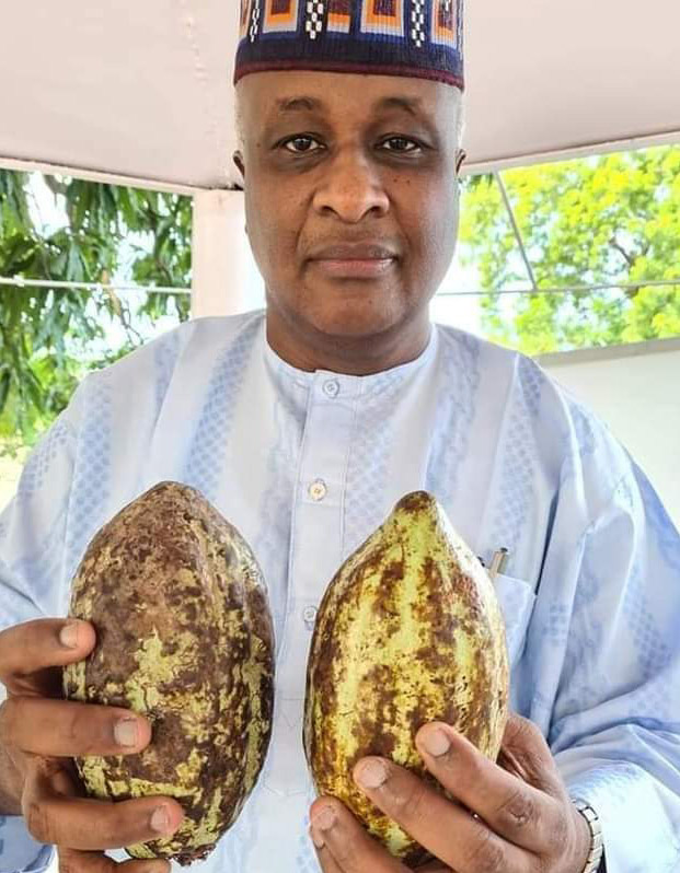 OPINION:COCOA FROM ADAMAWA, a feature by Timawus Mathias
