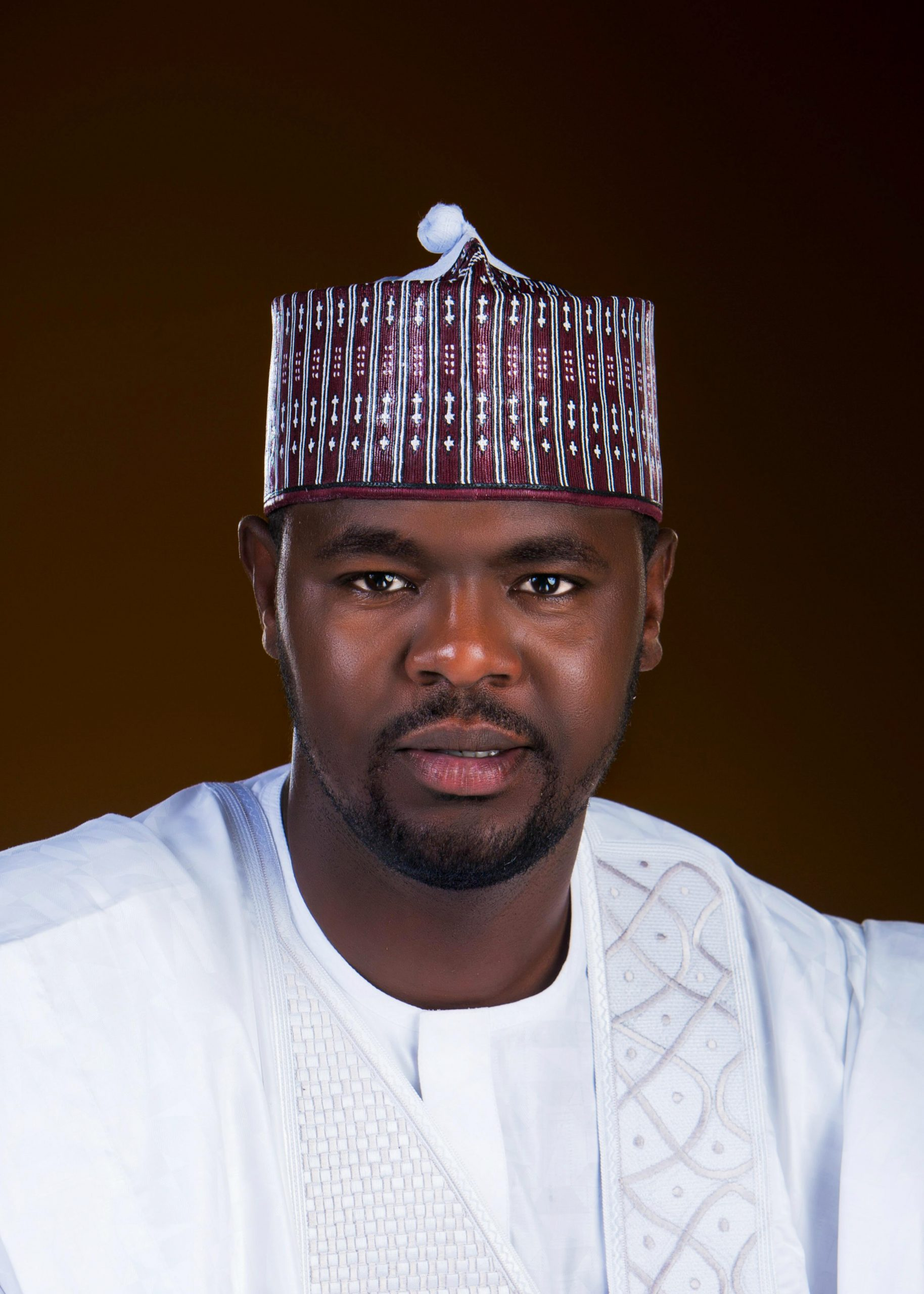 OPINION:GOVERNORS ARE THE MAJOR PROBLEM OF NIGERIAN DEMOCRACY,by Com Bashir