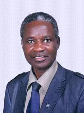 Adamawa MRDD candidate sues 59 people for burning House,Farmland worth millions of Naira