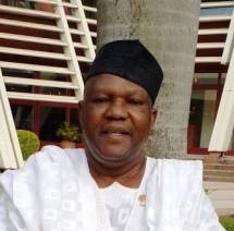 Powerful Nigerians Brought In Bandits, Arms For Civil War Should Jonathan Remain In Power Beyond 2015, Says Mailafia