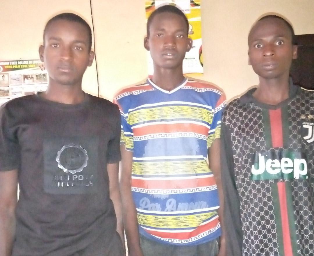 Police arrest 3 Notorious kidnappers terrorizing Adamawa,Borno communities in Yola