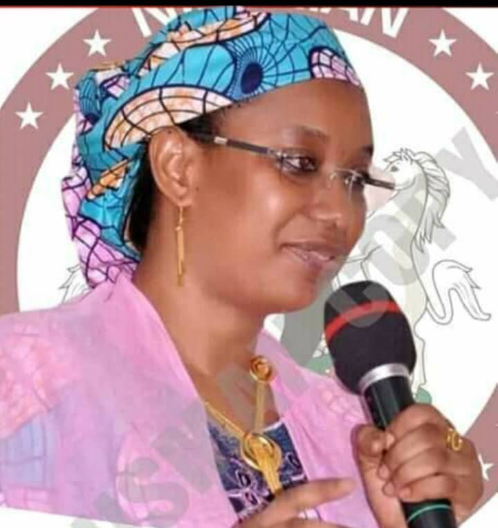 Binani's Bill To Amend UTH Act, Upgrade FMC Yola To TH Pases 2nd Reading, Opens For Public Hearing