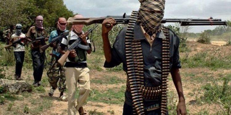 Gunmen storm Benue State university, kidnap students