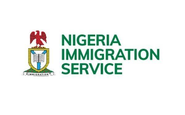 NIS to profile herdsmen entering Nigeria through Niger border