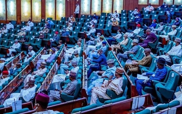 Killings: Reps suspend constitution review in Imo