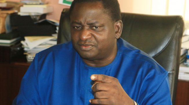 Nigeria needs a leader with iron fist, a 'kind bully' -Femi Adesina