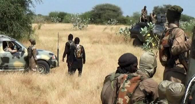 Boko Haram fighters reunite with ISWAP, swear allegiance to new leader