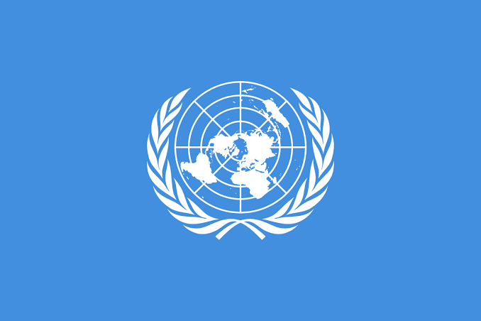 UN to Nigerian youths: Stop working against govt