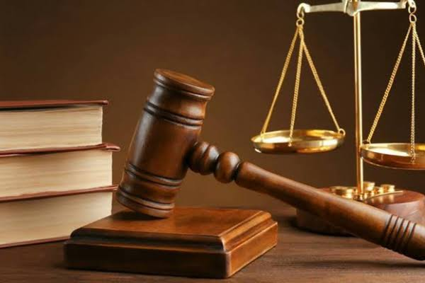 We eat human flesh when we change to lizards, cats, cows-3 child witches tell Yola court