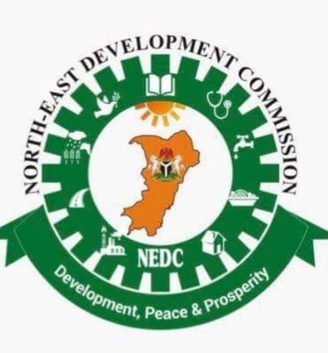 NEDC commissions major bridge linking Adamawa, Borno destroyed by Boko Haram