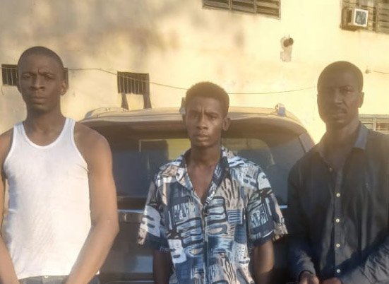 Car snatchers arrested in Adamawa by police